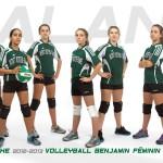 volleyball benjamine division 3