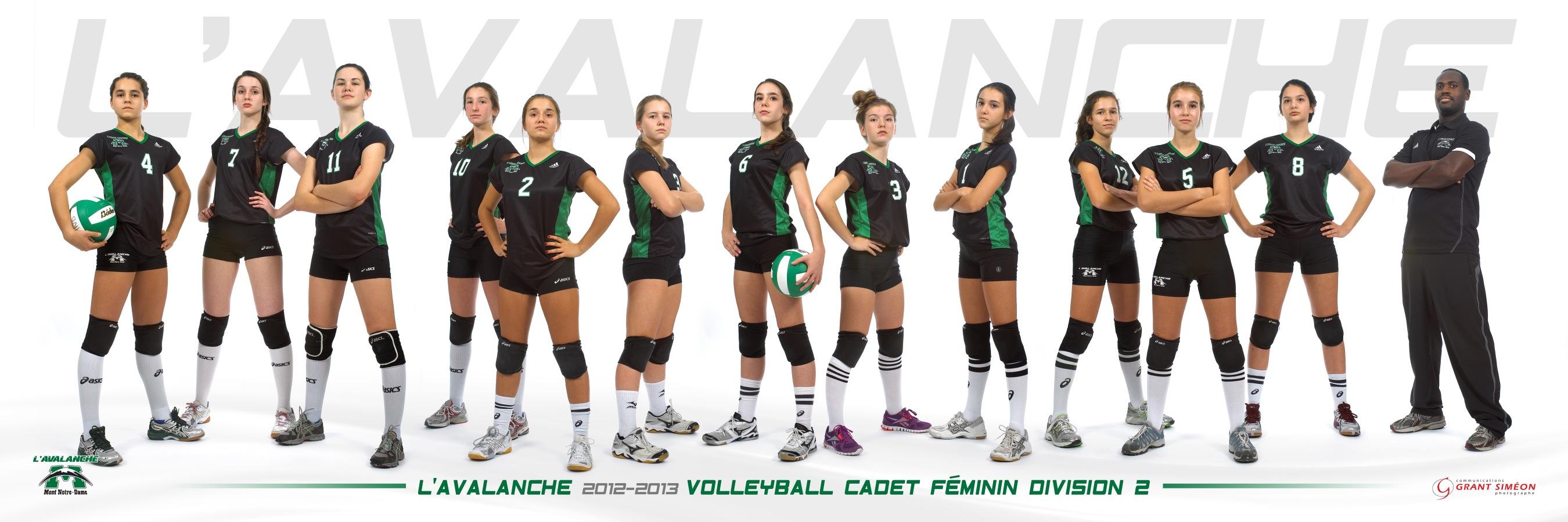 volleyball cadet division 2