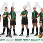 soccer benjamine division 2