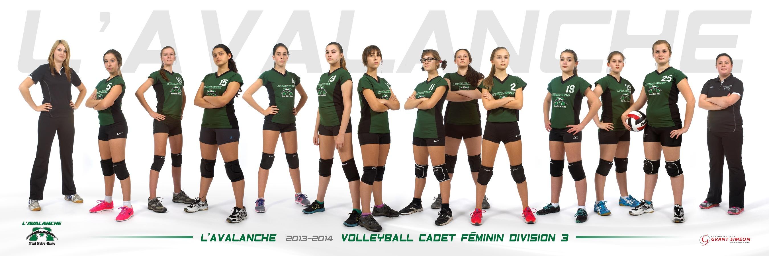 MND_volleyball-cadette-div-3-2013-2014