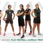 cmnd_flagfootball-juv-div-2-2013-2014